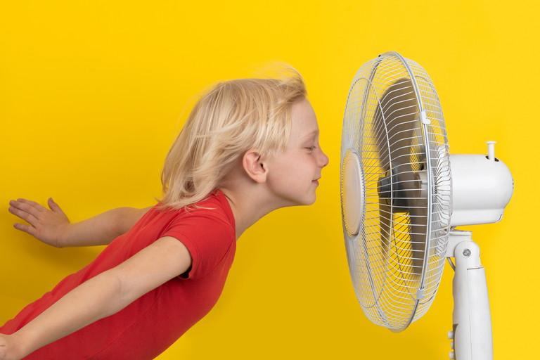 扇風機にあたる